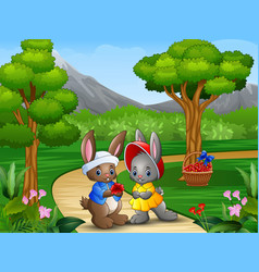 Cartoon rabbit couple on valentine day vector