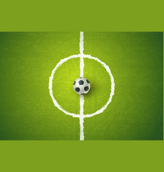 football ball on green grass vector image