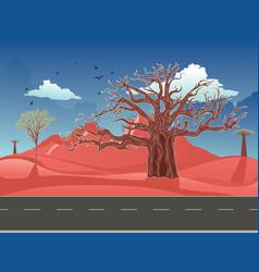 Red australian desert vector