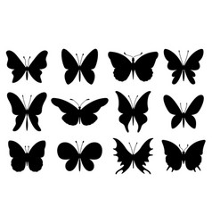 Silhouettes butterfly stencil moth wings vector