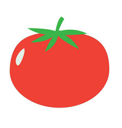 tomato sign tomato icon on white background flat vector image