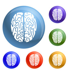 top view brain icons set vector image