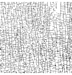 cracked paint vector image vector image