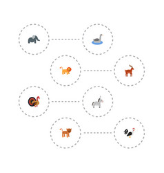 Flat icons trunked animal jackass waterbird and vector