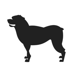 Rottweiler Dog Black Silhouette vector image vector image