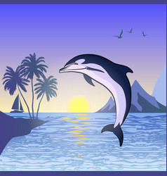 dolphin against the sunset background vector image