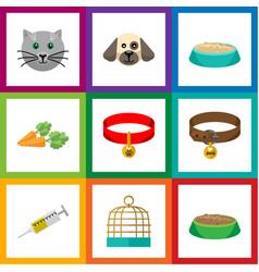 flat icon animal set of vaccine kitty collar vector image