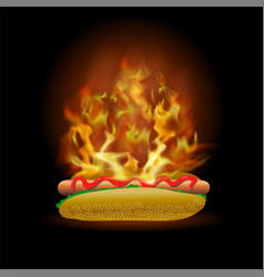 Burning fresh hot dog with ketchup vector
