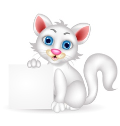 cute fluffy white Cat cartoon with blank sign vector image