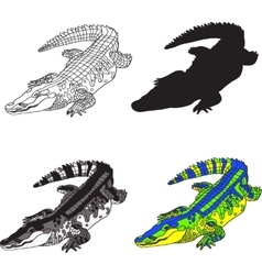 depicting crocodile made contour vector image