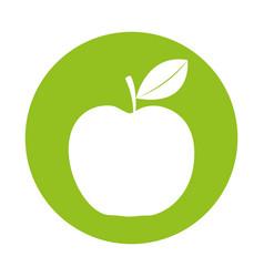 round icon apple cartoon vector image