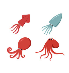 squid octopus and cuttlefish in flat vector image