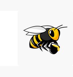 character bee with honey vector image