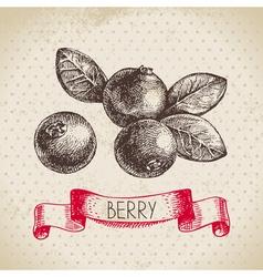 Cranberry Hand drawn sketch berry vintage vector image vector image