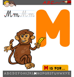 letter m with cartoon monkey vector image vector image