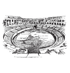Ampitheater of nimes france open-air venue used vector