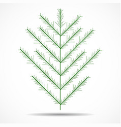 coniferous tree christmas tree vector image