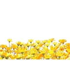 Field of yellow flowers vector
