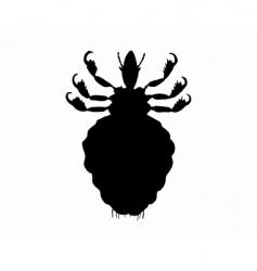 human louse vector image
