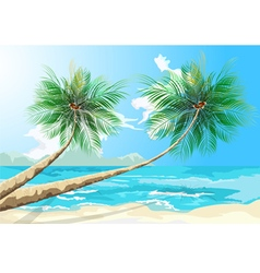 Palm trees scene vector image