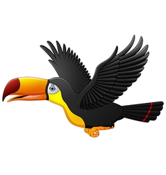 Cute cartoon toucan bird flying vector image vector image