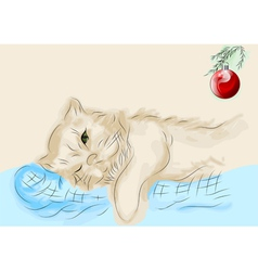 cat and christmas ball vector image