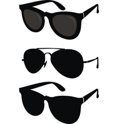 classical and sport sunglasses vector image