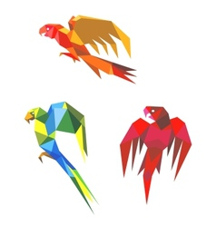 Abstract origami parrots vector image