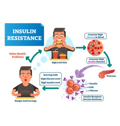 Insulin resistance labeled vector