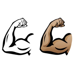 Muscular Arm Flexing Bicep vector image