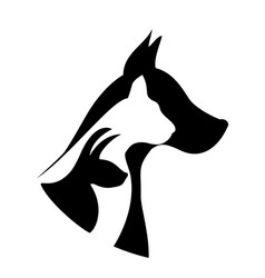 pets silhouettes logo vector image