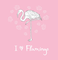 Pink flamingo isolated on white background vector