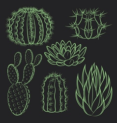 set isolated cactus vector image