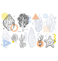 summer underwater life set with geometric memphis vector image