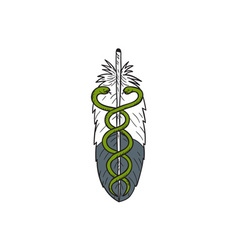 Medical Snake Eagle Feather Drawing vector image