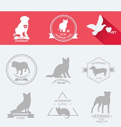 Set dog ans cats icon and labels flat vector image