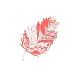 Pink feather with doodle style ornament vector image vector image