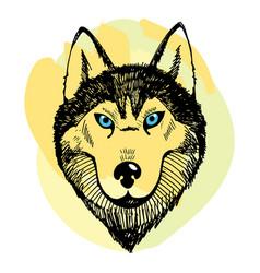 Hand draw husky portrait vector