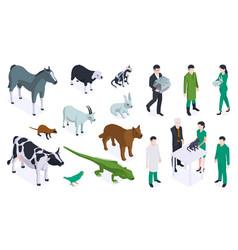 isometric veterinary color icon set vector image