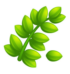 olive leaf branch icon cartoon style vector image