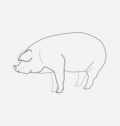pig icon line element of pig vector image