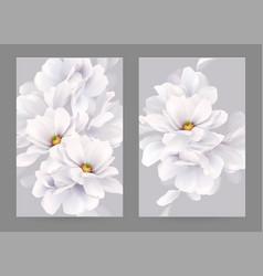 set two invitation or congratulation cards vector image
