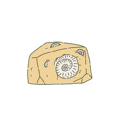 Stone with fossilized prehistoric animals like vector