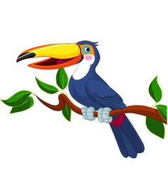 toucan sitting on tree branch vector image