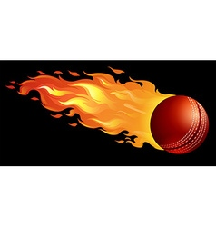 Cricket ball on fire vector image vector image