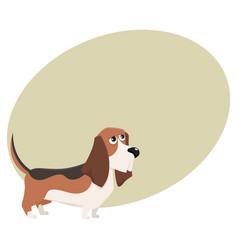 cute purebred basset hound dog character cartoon vector image vector image