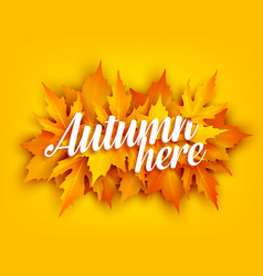 autumn leaf poster with yellow maple foliage vector image