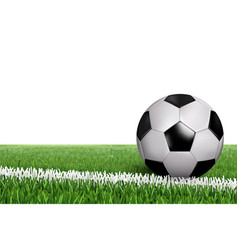 ball on line in field vector image
