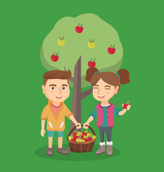 Children harvesting apples in apple orchard vector