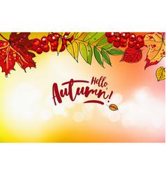 Hello autumn sale background vector